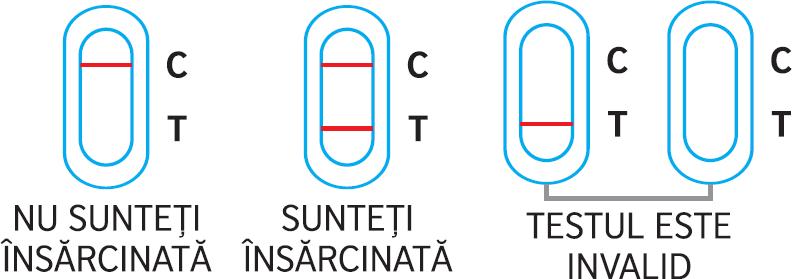 Interpretarea reultatului testului de sarcină Barza ULTRASENSIBIL stilou