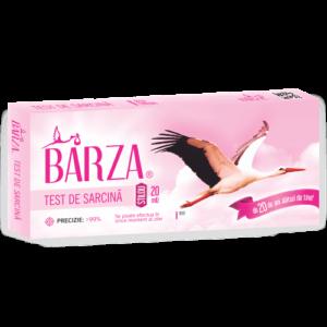 test_de_sarcina_barza_normal_stilou_20