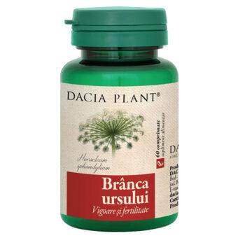 Branca Ursului Dacia Plant, vigoare, fertilitate, vitalitate, afrodisiac