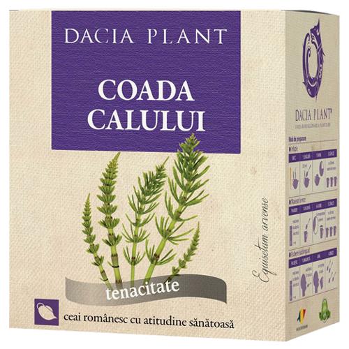 Ceai de coada calului Dacia Plant, sistem urinar